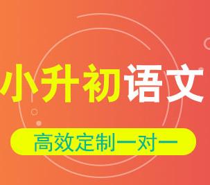 小升初语文综合提分课程
