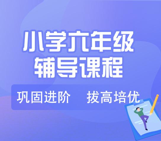 秦学教育-小学六年级语文一对一辅导寒假课