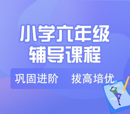 秦学教育-小学六年级英语一对一VIP课程