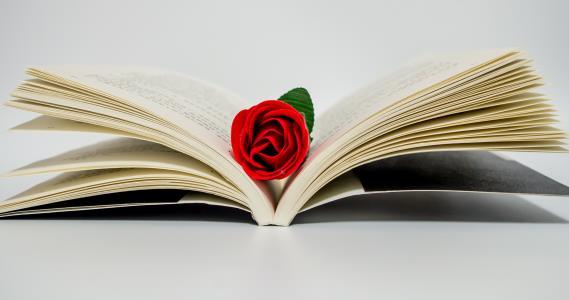 白居易写《琵琶行》的原因是什么?琵琶女的身世背景是什么?