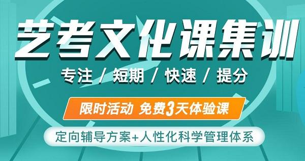 西工大艺考文化课补习,2021年西补文化课冲刺班!