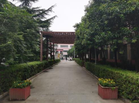 2021年江苏省新高考使用的是全国几卷  2021江苏省新高考总分