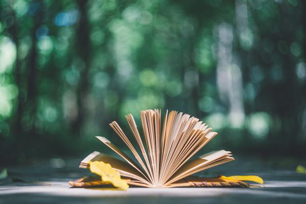 体现清凉的古诗词有哪些?清凉诗词分享!
