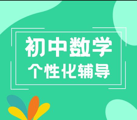 2017中考数学冲刺寒假班